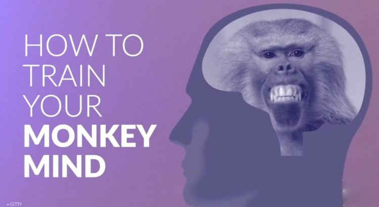 How to train your Monkey Mind